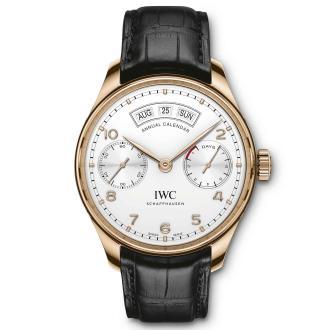 iwc-iw503504